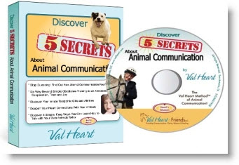Learn Animal Communication with Val Heart